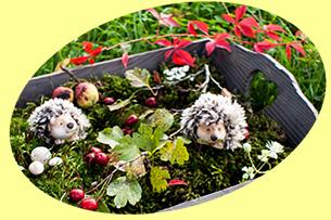 Blumenbeet mit Igeln